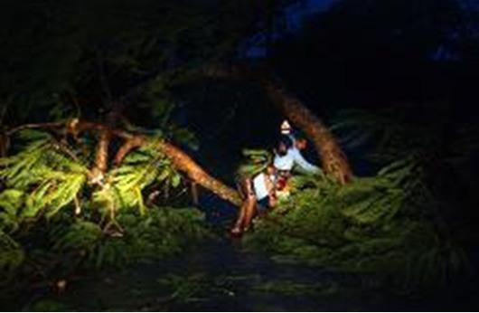 الاعصار فايلين يضرب الساحل الشرقي للهند