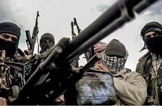 عشرات الأمريكيين يقاتلون مع جهاديي سورية