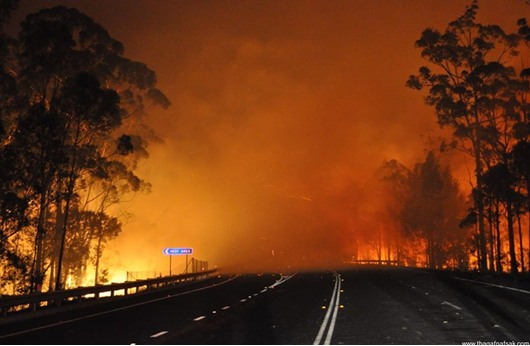 حرائق استراليا تتسبب بمقتل طيار اطفائي