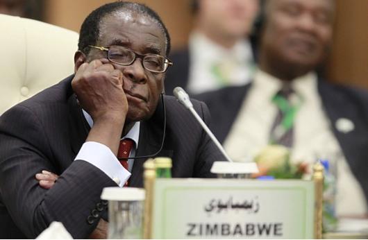 زيمبابوي تلغي قانون إهانة الرئيس