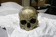 علماء يحللون جمجمة الفيلسوف الفرنسي ديكارت