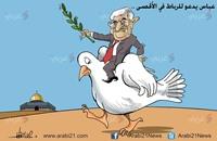 عباس المرابط
