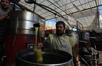 ركود سوق زيت الزيتون بغزة بسبب تبعات الحرب