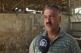 """تحقيقا لحلم طالما راوده.. فلسطيني في غزة يُقيم مزرعة """"غزلان"""""""