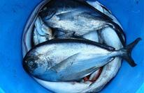 تعرف على دور المحيطات في تأمين الغذاء للبشر (إنفوغرافيك)