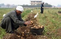 هل تبيع الحكومة المصرية مياه الري للفلاحين؟ هذه ملامح الخطة