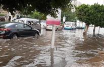 """""""قوت الفلاحين"""" يغرق بمياه الأمطار في مصر.. ما حجم الضرر؟"""