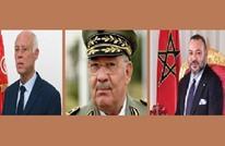 الصلابي يدعو المغرب وتونس والجزائر لحقن الدماء في ليبيا