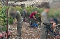 جنود الاحتلال يقدمون يد المساعدة للمستوطنين بقطاف العنب