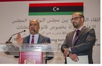 مجلسا الدولة والنواب الليبيين يدعوان لمراقبين دوليين للانتخابات