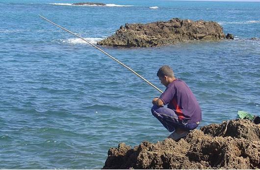 الجزائر تستضيف معرضا دوليا للصيد