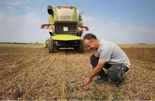الزراعة العضوية تتطلب الانطلاق من الصفر