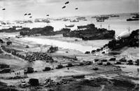 دراسة: 12 ألف فلسطيني شاركوا بالحرب ضد النازية الألمانية