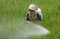 مبيدات حشرية بجسمك.. يمكنك أن تقلل منها بنسبة ٧٠%