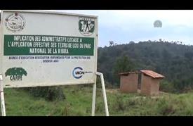 """غابة """"كيبيرا"""" .. رئة العاصمة البوروندية في خطر"""