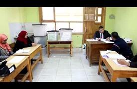 تراجع الإقبال على الانتخابات في مصر (فيديو)