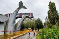 """""""حوت عملاق"""" يحمي قطارا من كارثة في هولندا"""