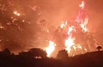 """قتلى بحرائق """"فجائية"""" في غابات شاسعة بالجزائر (شاهد)"""