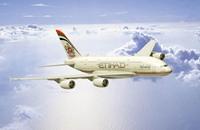 طائرة إماراتية تهبط في مطار بن غوريون في تل أبيب (شاهد)