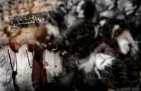 مدرسة أردنية تنشر التشيع بين طلابها بستار صوفي