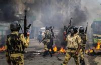روجر كوهين: مصر بلد لمواطنين ينبحون لفرعون جديد
