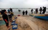 المنخفض الجوي ينعش صيد الأسماك بغزة