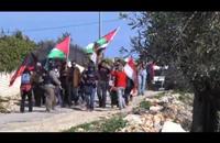 مواجهات خلال مسيرات أسبوعية في الضفة (فيديو)
