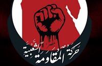 """""""المقاومة الشعبية"""" في مصر.. حل أم مشكلة؟"""
