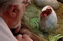 تلغراف: نظرية جديدة تكشف سببا مثيرا لانقراض الديناصورات