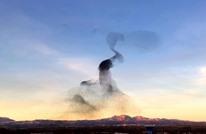 استعراض مذهل لطيور بتشكيلات فريدة في السماء (شاهد)