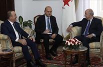 الصلابي: التنسيق التركي ـ الجزائري مفيد لحل أزمة ليبيا