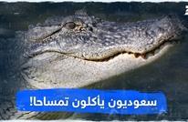 سعوديون يأكلون تمساحا!