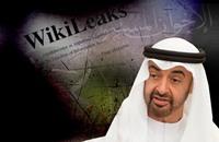 بن زايد: لو أجريت انتخابات في دبي فسيفوز الإخوان