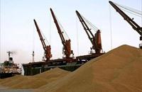 نقص الدولار في مصر يضغط على مستوردي القمح