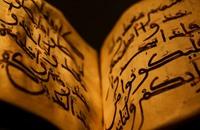 هل يوجد إعجاز علمي في القرآن الكريم؟.. باحثون يجيبون