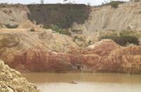 كارثة بيئة تحدق بغابات الأمازون البيروفية (فيديو)
