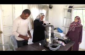 قهوة فلسطينية من نواة التمور