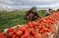 عجز التجارة الخارجية للأردن يقفز 10.5 بالمائة في 8 أشهر