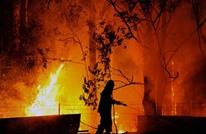 جهود حثيثة في أستراليا لاحتواء حرائق غابات