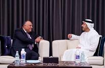 """وزير خارجية مصر بأبو ظبي """"لمواجهة التدخلات الخارجية بالمنطقة"""""""
