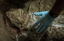 """علماء يحددون الفترة الزمنية التي ظهر فيها """"أول البشر"""""""