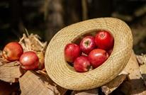 هل يتسبب تغير المناخ باختفاء التفاح الأحمر؟