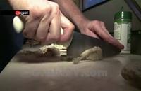 بيتزا الثعابين تجتاح جنوب فلوريدا (فيديو)