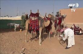 انطلاق مهرجان الجنادرية للتراث والثقافة في السعودية