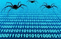 من يقف وراء صناعة فيروسات الإنترنت؟