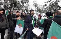 وقفة أمام قنصلية الجزائر بإسطنبول رفضا لترشح بوتفليقة (شاهد)