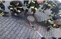 فريق كبير من رجال الإطفاء الألمان لإنقاذ.. جرذ (فيديو)