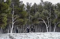 الثلوج تغطي دولا عربية وتصل مصر وليبيا والسعودية (شاهد)