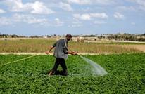الاحتلال يتعمد إغراق أراضٍ زراعية بغزة ويتسبب بخسائر فادحة