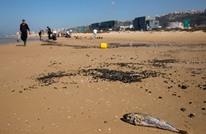 """خبير: التلوث و""""هجوم السفينة"""" فشل إسرائيلي بالساحة البحرية"""